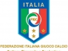 figc-sgs1